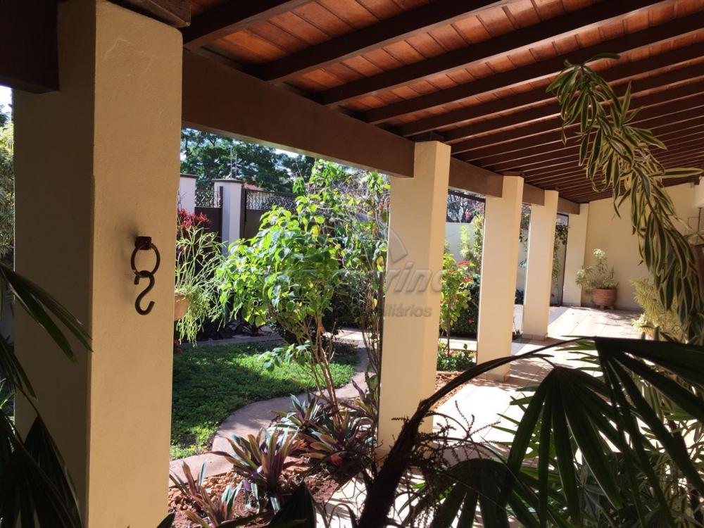 Casas / Padrão em Jaboticabal - foto 17