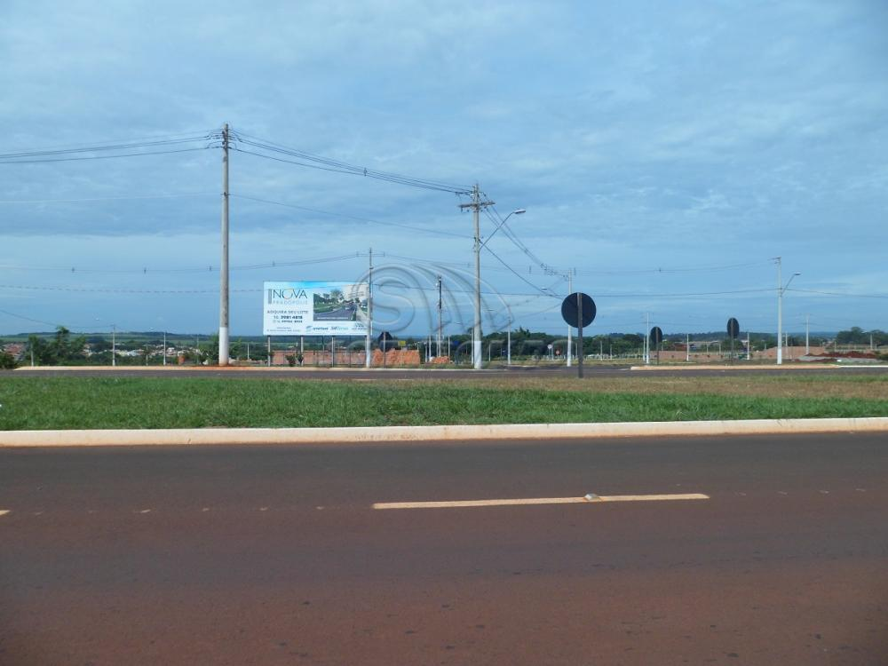 Terrenos / Residencial em Pradópolis - foto 0