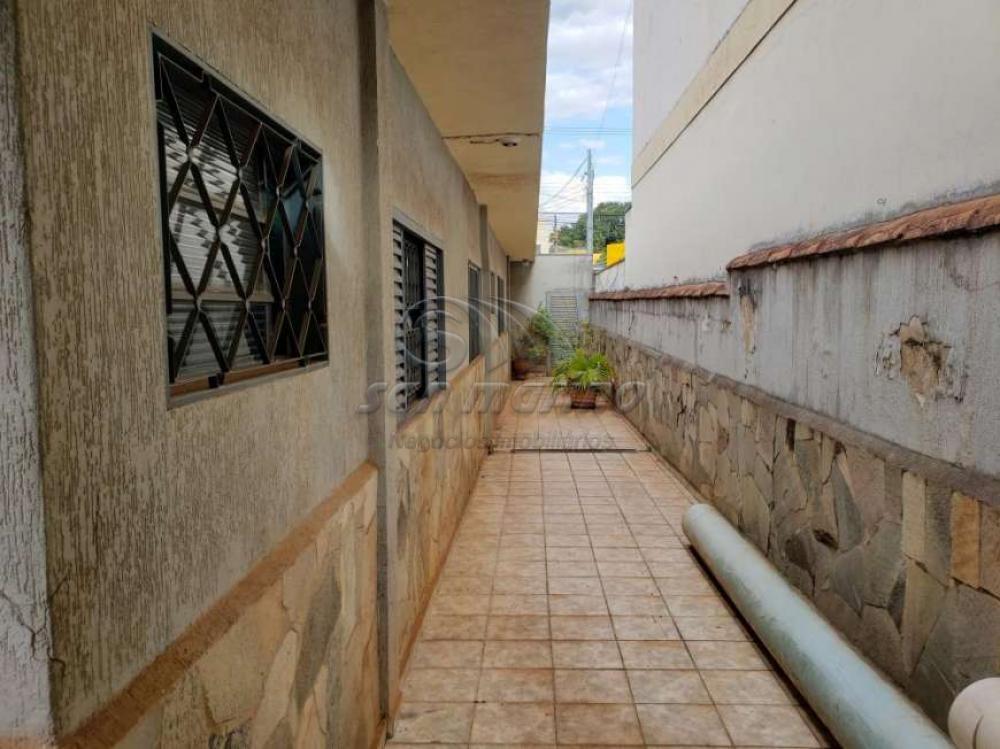 Casas / Padrão em Ribeirão Preto - foto 15