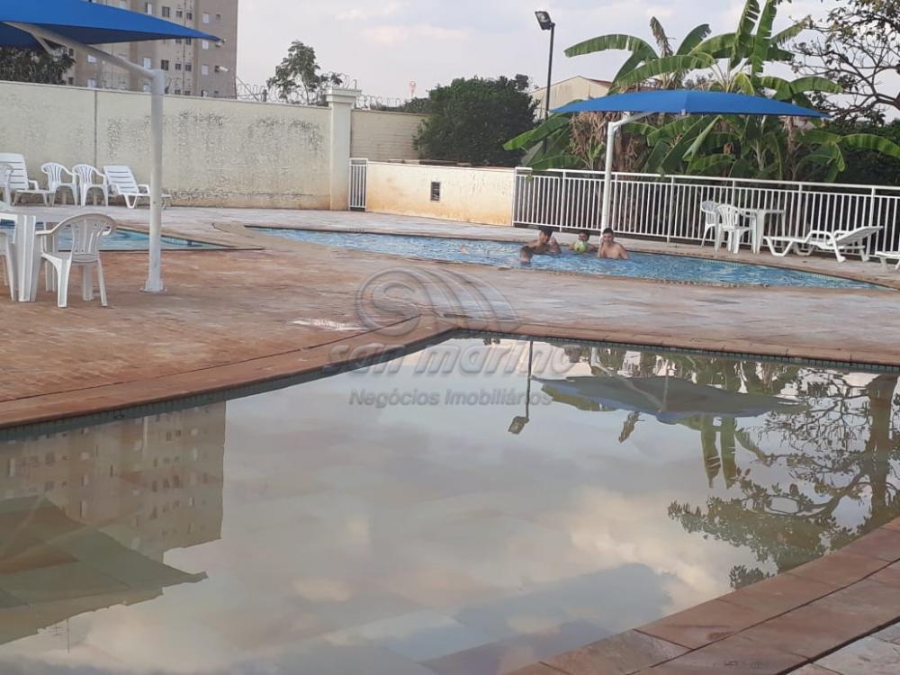 Apartamentos / Padrão em Ribeirão Preto - foto 26