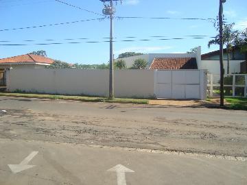 Jaboticabal Jardim Alvorada Chacara Venda R$1.200.000,00 3 Dormitorios 4 Vagas Area do terreno 4632.76m2